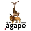 agape design ltd