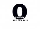 PHOENIX ART FOR HAIR